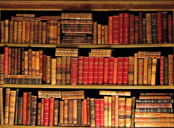 Выкуп книг спб металлоискатель f5